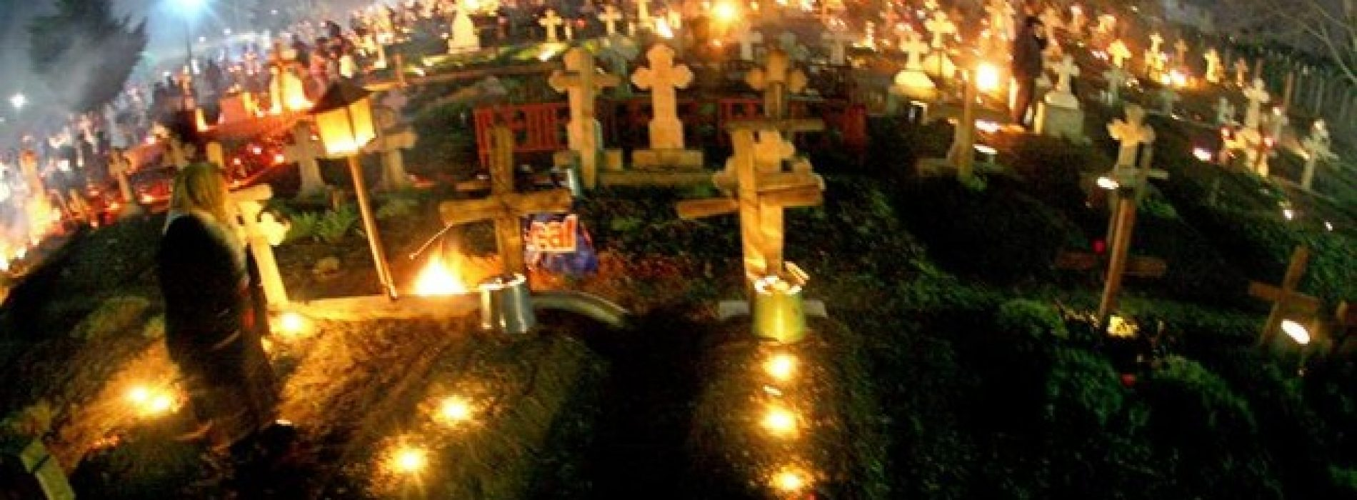 Propunere. Garduri vii în jurul cimitirelor