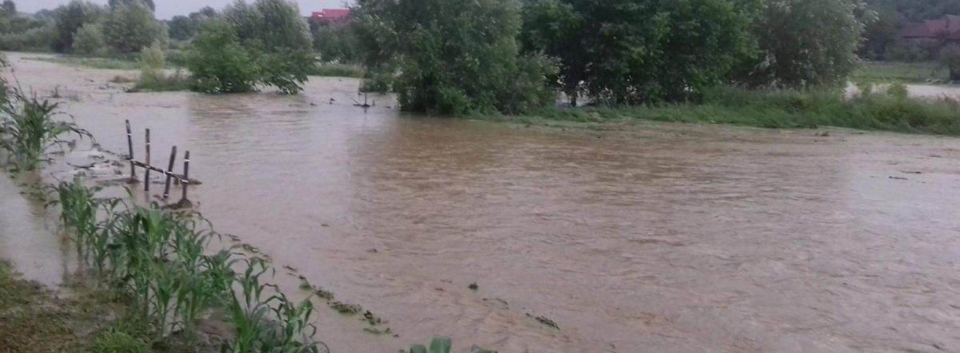 Societatea Drumuri și Poduri a intervenit pentru degajarea drumului în Oarța și în Bârsana