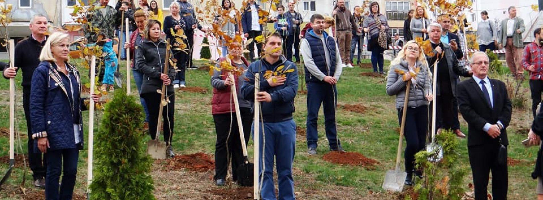 100 de STEJARI pentru 100 de ani de la UNIRE, plantați la Cavnic