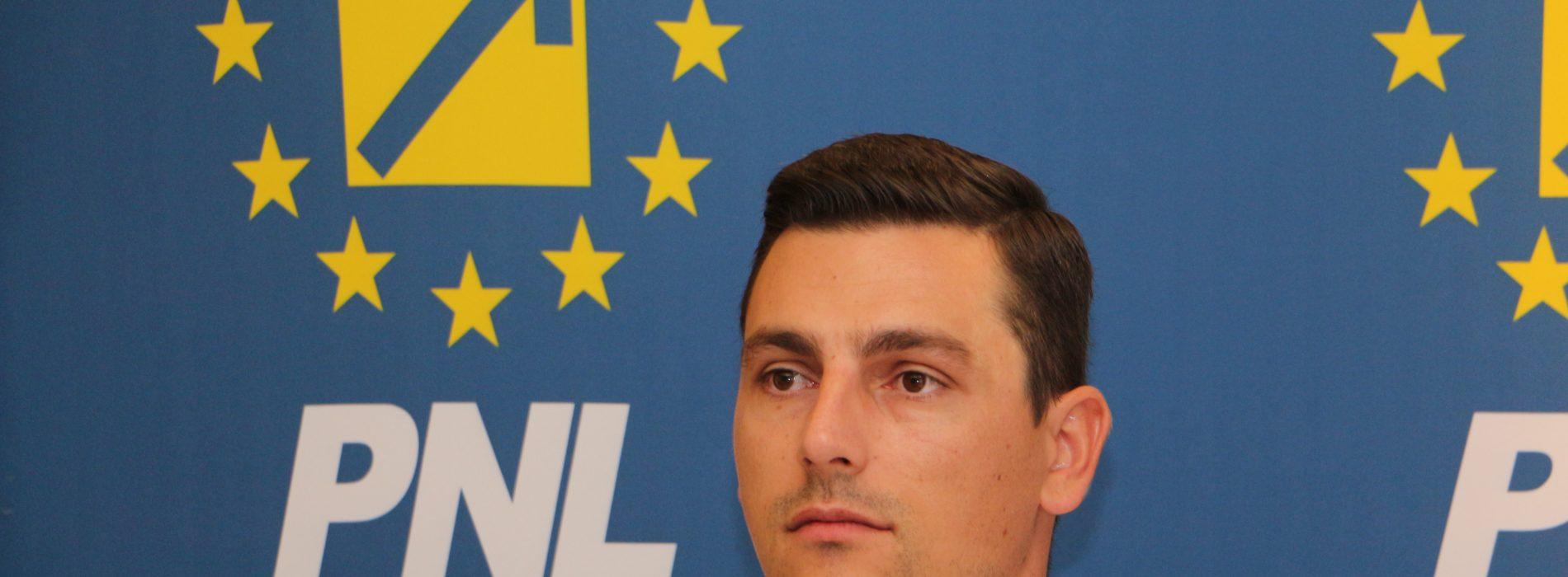 """Ionel Bogdan (PNL): """"Sub pretextul remanierii, Liviu Dragnea i-a eliminat din executiv pe cei care l-au criticat"""""""