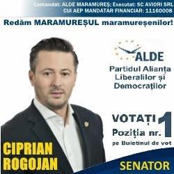 cici-rogojan-1