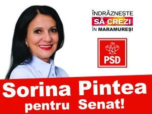 sorina-2-afise-rosu-21