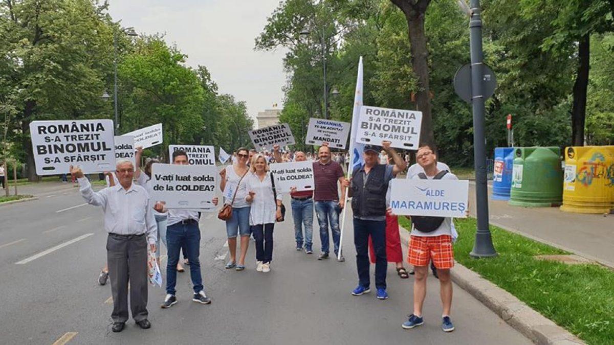 """MITING. Cornelia Negruț, președinte ALDE Maramureș: """"Am protestat pentru a nu reveni la teroarea anilor '50"""""""