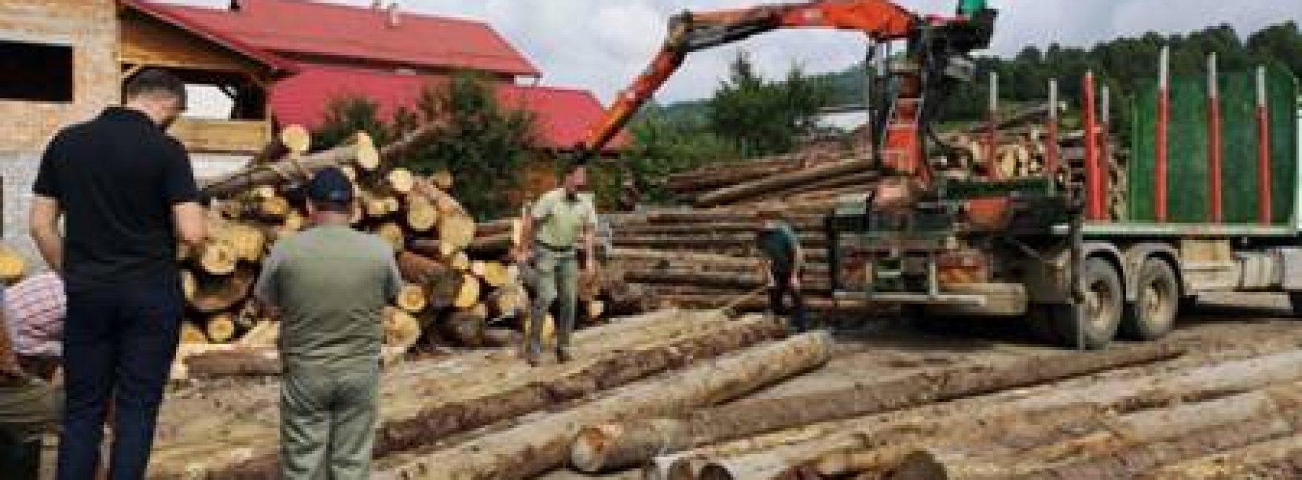 LEMNE de aproape 6 MILIARDE lei vechi, CONFISCATE în 5 zile în Maramureș. La confiscarea celor 2.400 mc de lemne au participat POLIȚIȘTI din 13 județe