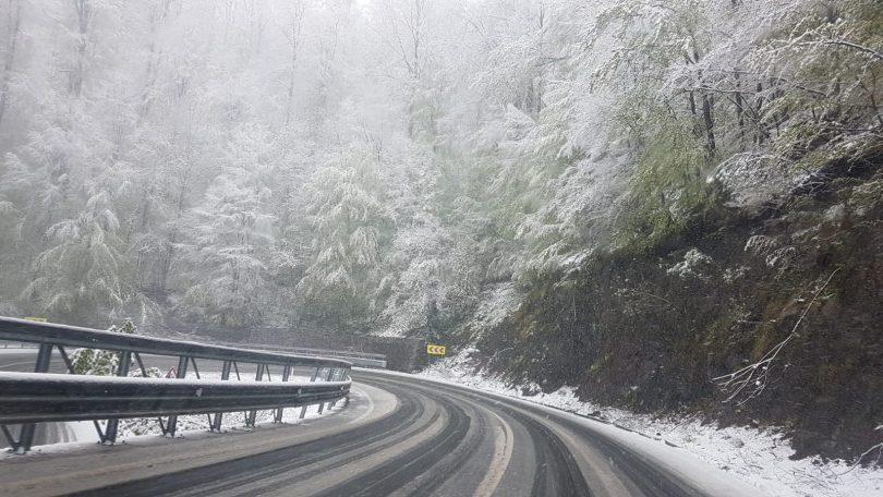 VIZIBILITATE redusă în Pasul Prislop. Vreme deosebit de rece AZI cu temperature între -7 si -4 grade