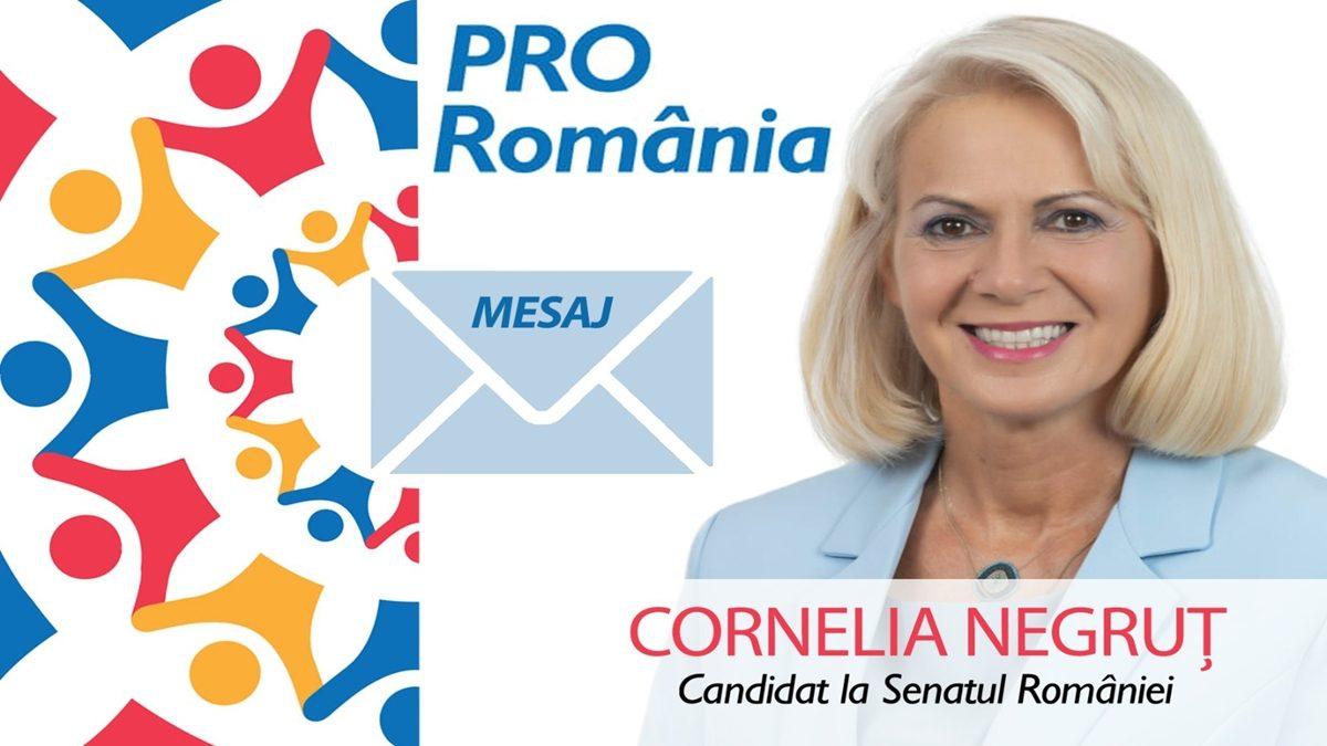 """Cornelia Negruț (PRO Romania): """"După fuziunea cu ALDE, PRO România este singura alternativă la înțelegerea dintre PSD și PNL"""""""