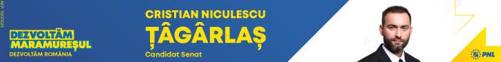 Cristian Tagarlas Candidat Senat