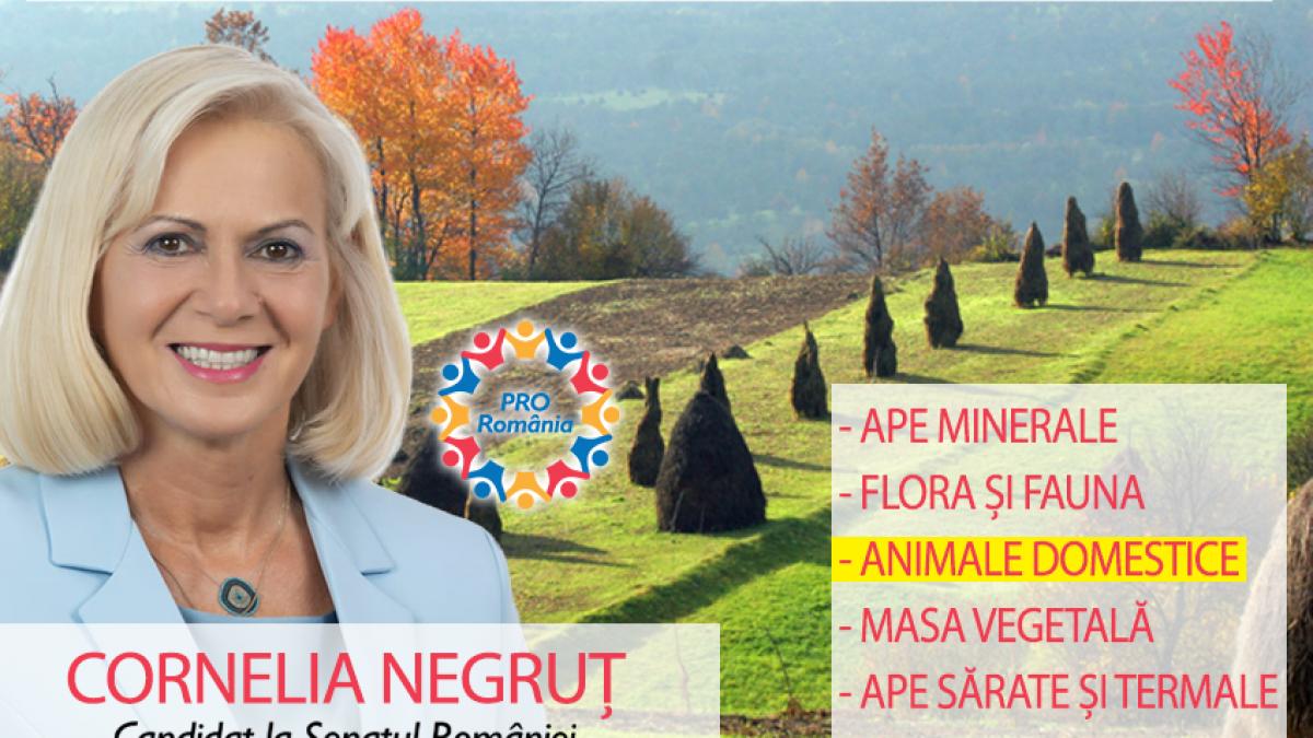 """Cornelia Begruț (PRO România): """"Să ne producem propria hrană sănătoasă!"""""""