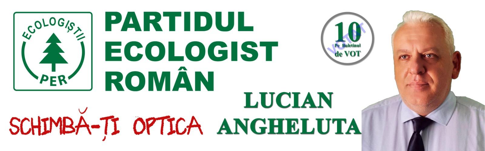 Lucian Angheluta Camera Deputatilor