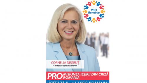 Cornelia Negruț: Ministrul Culturii este obligat să împiedice distrugerea culturii românești. Muzeele, galeriile de artă și alte activități culturale reprezentative sunt în pericol de dispariție