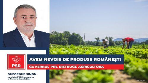 Gheorghe Șimon (PSD): Guvernul PNL, blestemul agriculturii românești!