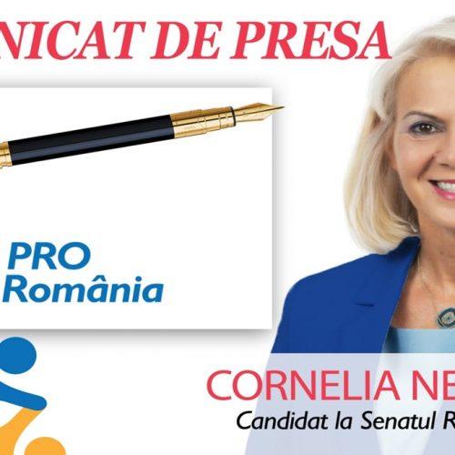 Cornelia Negruț (PRO Romania): Economia României în colaps, guvernanții fără soluții
