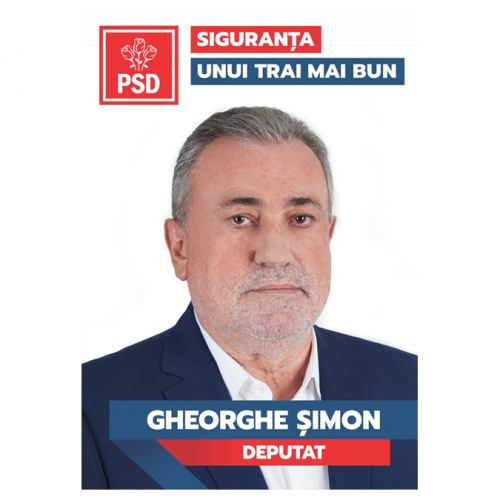 """Gheorghe Șimon (PSD): """"Licitația pentru gazoduct este deja pe SEAP"""""""