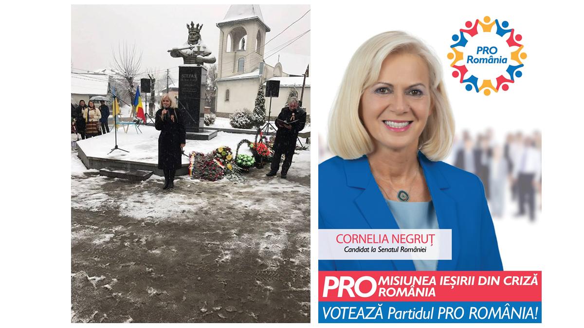 """Cornelia Negruț, candidat PRO România Maramureș: """"Nu există sentiment mai înălţător pentru noi, românii, decât iubirea de neam şi de ţară"""""""