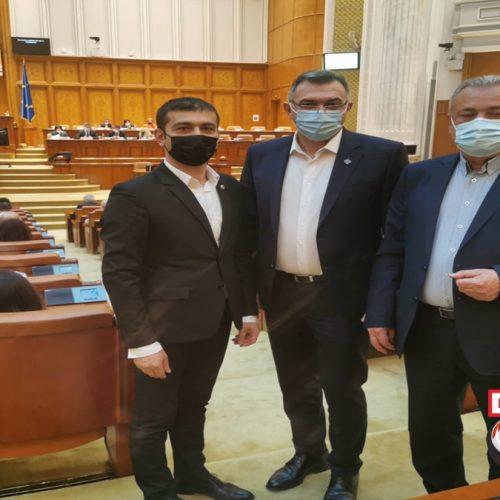 Parlamentarii PSD Maramureș au inițiat un proiect de lege pentru TVA redus la lemnele de încălzire