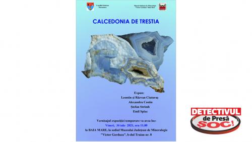 """Expoziția """"Calcedonia de Trestia"""" la Muzeul de Mineralogie Baia Mare"""