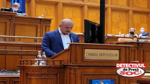 Deputatul Călin Bota A VOTAT pentru reducerea TVA pentru lemnele de foc de la 19% la 5%